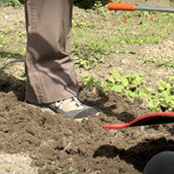Tuincenter Van Gucht - Aalst - Tuinfrezen